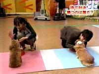 井上和香ちゃん もんちゃん04