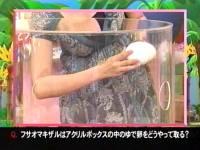 井上和香ちゃん 動物奇想天外02