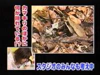 井上和香ちゃん 動物奇想天外06