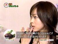 井上和香ちゃん 浜ちゃんと06