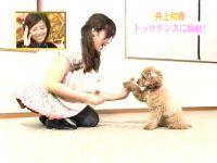 井上和香ちゃん ドッグダンス 03