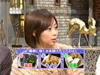 井上和香ちゃん あるある大事典 02