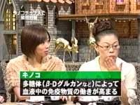 井上和香ちゃん あるある大事典 05