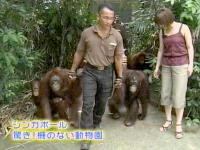 井上和香ちゃん 世界のスーパー動物園 02