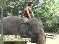 井上和香ちゃん 世界のスーパー動物園 06