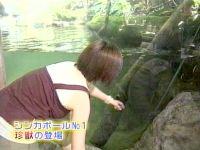 井上和香ちゃん 世界のスーパー動物園 01