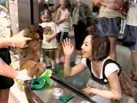 井上和香ちゃん スーパー動物園 04