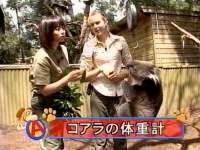 井上和香ちゃん 動物奇想天外 06