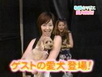 井上和香ちゃん 世界まる見え!テレビ特捜部 01